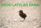 Ziedo Latvijas dabai!