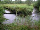 Rauzas upes līkums