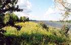 Lielupes palienes pļavas Pilssalā
